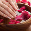 Stock Photo: Spa for hands