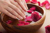 Spa for hands — Stockfoto