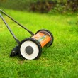 Lawnmower cutting grass — Stockfoto