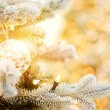 Christmas decoration — Stock Photo #4784218