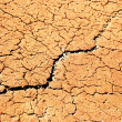 Dry soil texture — Stock Photo