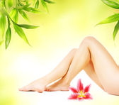 Female legs with pink lily isolated over abstract green backgrou — Stock Photo
