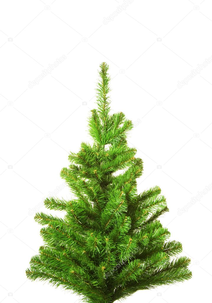 Christmas tree without decoration. Isolated on white background  Stock Photo #4790871
