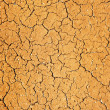 Dry soil texture — Stock Photo #4800501