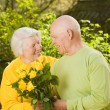 Happy senior couple in love outdoors — Stock Photo #4800744