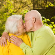 Stock Photo: Kissing senior couple