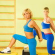 Beautiful women exercising in fitness club — Stock Photo #4804022