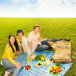 Royalty-Free Stock Photo: Friends at picnic