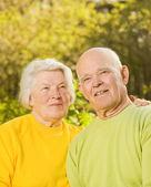 Senior couple outdoors — Stock Photo