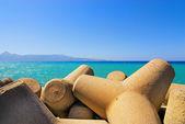 与混凝土防波堤锥体的海滨 — 图库照片