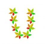 höstens alfabetet - u — Stockfoto