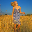 Sexy blond girl in the field — Stock Photo