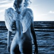Beautiful angel in a sea at sunset time (toned in blue) — Stock Photo