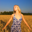 Stock Photo: Beautiful girl in the wheat field at sunset time
