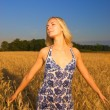 Beautiful girl in the wheat field at sunset time — Stock fotografie