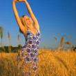 Beautiful blond girl stretching in the wheat field — Stock Photo