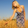 Beautiful blond girl in the field — Stock Photo