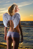 Beautiful angel in a sea at sunset time — Stock Photo