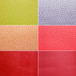 Stock Photo: Colorful leather patterns