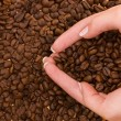 Royalty-Free Stock Photo: Heart shape with hands above coffee beans