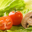 Fresh tomato and mushroom on a green salad leaf — Stock Photo