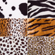 Animal skin fabric textures - Stock Photo