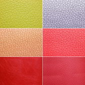 Colorful leather patterns — Stock Photo