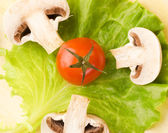 Tomato and moshroom pieces on a green salad leaf — Stock Photo