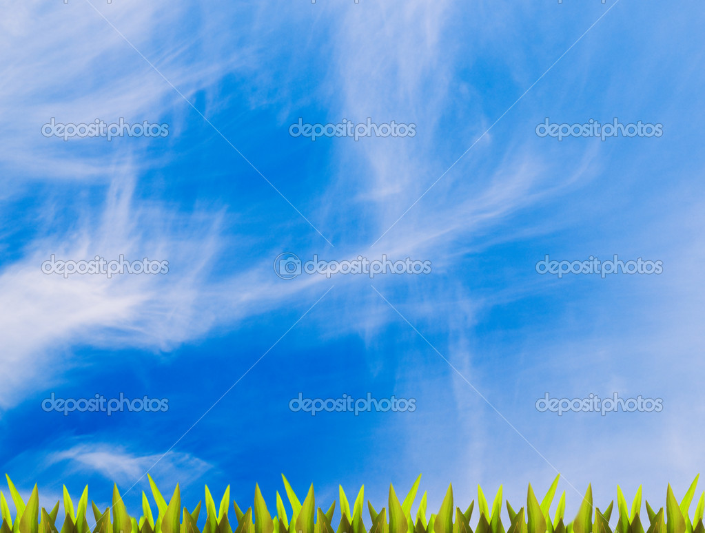 Green grass over blue sky (lots of copy space)  Stock Photo #5098263