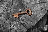 Rusty key on log — Stock Photo