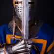 Noble knight with sword — Stock Photo #2813771