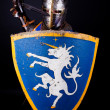 Stock Photo: Picture of defending knight