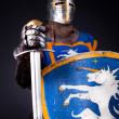 Image of confident knight — Stock Photo