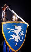 Cavaleiro de modo a defender — Fotografia Stock