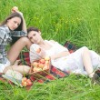 Royalty-Free Stock Photo: Relaxing picnic
