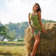 Woman at the haystack - Stock Photo