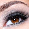Stock Photo: Eye with dark brown glamour make-up