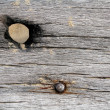 Stock Photo: Aged wood on beach