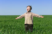 Boy in field — Stock Photo