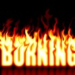 Stock Photo: Burning text