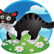 Stock Vector: Black fun cat on color background