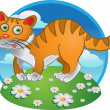 Orange fun cat on color background — Stock Vector