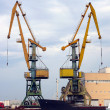 Stock Photo: Cranes in Sochi seport