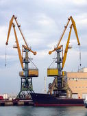 Cranes in the Sochi sea port — Stock Photo