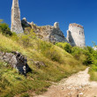 The Castle of Cachtice, Ruined fortification — Stock Photo