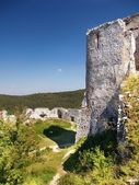 The Castle of Cachtice - Donjon — Stock Photo