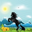 Black horse - Stock Vector