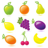 Fruit — Stock Vector