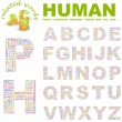 HUMAN.  Illustration with different association terms. — Imagen vectorial