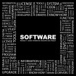 SOFTWARE. Word collage on black background - Stock Vector